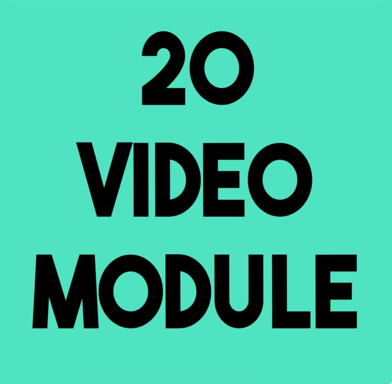 vIDEO MODULE IN FILMMAKING